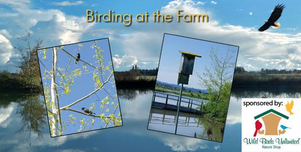 birding-at-the-farm-new-design